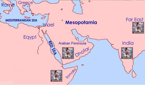 Map showing where ancient perfume plants were grown